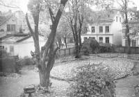 Nationens trädgård i oktober 1949. Foto: Erik Åhman
